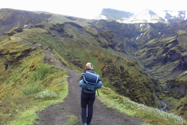 Auslandspraktikum in Island